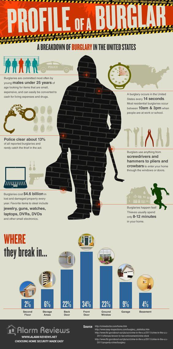 profile-of-a-burglar-security-statistics