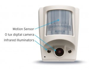 Complete Motion Sensor Guide - 9 Detector Types Reviewed
